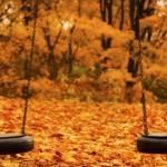 جملات قشنگ و خواندنی فصل پاییز